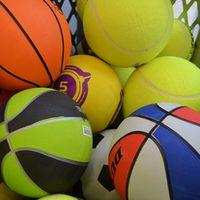 técnico superior en animación de actividades físicas y deportivas